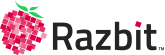 Razbit Business Technology Consulting Chicago